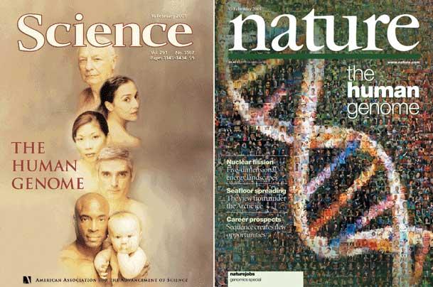 Геном человека: как это было и как это будет